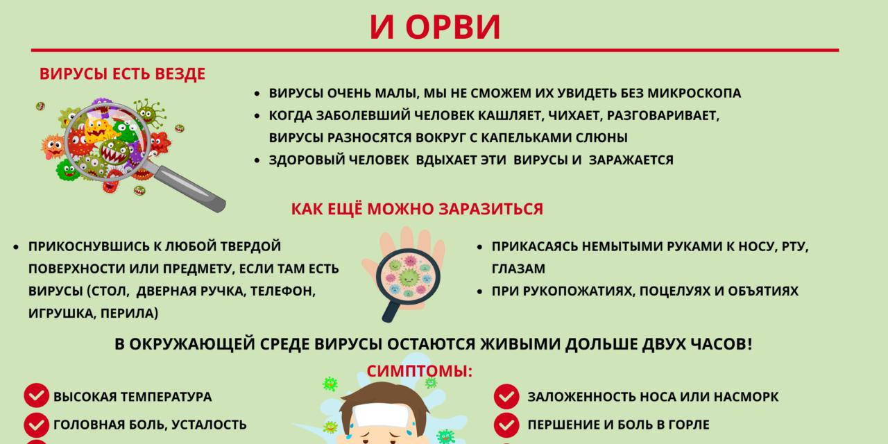 Профилактика (грипп, коронавирус, другие ОРВИ )